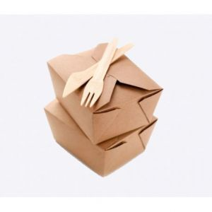 Κουτιά Noodle Boxes Craft